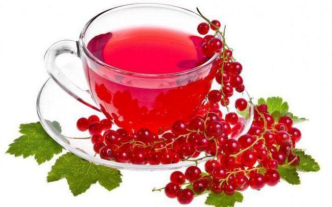 червона смородина користь і шкода для здоров`я